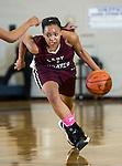 Wylie vs. Mansfield Summit (Girl's Varsity Basketball Playoff)