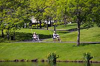 Riding bicycles on trail at Dawson Creek Park in Washington County, Oregon