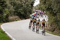 Team Jumbo-Visma descending a snake-road<br /> <br /> Stage 2 from Camaiore to Chiusdino (202km)<br /> <br /> 56th Tirreno-Adriatico 2021 (2.UWT) <br /> <br /> ©kramon