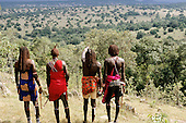 Lolgorian, Kenya. Siria Maasai Manyatta; four moran warriors standing on a hill looking out over the countryside.