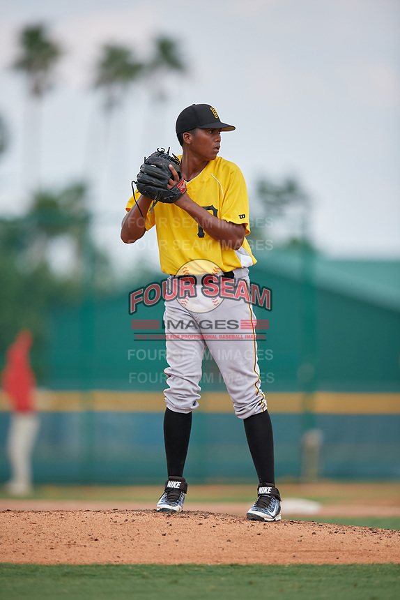 Pittsburgh Pirates pitcher Francis Del Orbe (37) gets ready to deliver a pitch during an Instructional League intrasquad black and gold game on September 28, 2017 at Pirate City in Bradenton, Florida.  (Mike Janes/Four Seam Images)