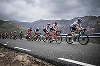 Sam Bennett (IRL/Bora-Hansgrohe) up the first categorised climb of the day: the Puerto de Bernardo<br /> <br /> Stage 20: Arenas de San Pedro to Plataforma de Gredos (190km)<br /> La Vuelta 2019<br /> <br /> ©kramon