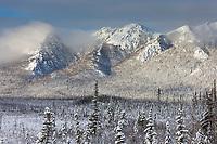 Winter landscape after a fresh snowfall on the foothills of the Brooks Range, Arctic, Alaska.