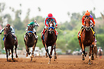September 27 2014: Beholder with Mike Smith up wins the Zenyatta Stakes at Santa Anita Park in Arcadia CA. Alex Evers/ESW/CSM