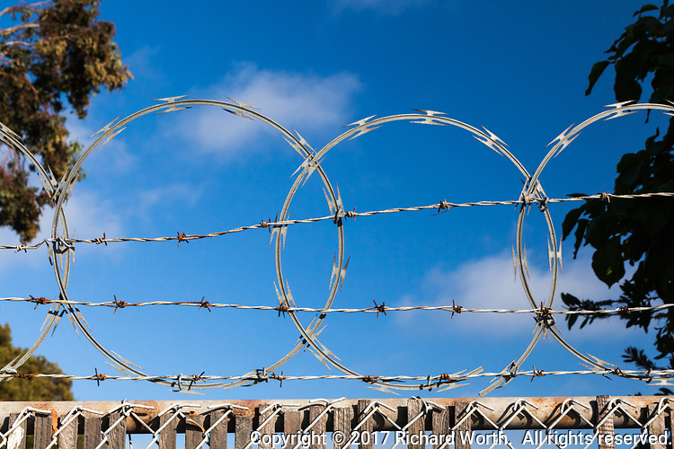 Barbed wire and razor wire at the top of a fence with blue sky behind and foliage on either side.