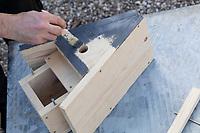 Selbstgebaute Holz-Nistkästen, Nistkasten für Vögel aus Holz, Vogelkasten, Meisenkasten selber bauen, selbst bauen, Basteln, Bastelei. Schritt 11: das Holz wird mit ungiftiger Holzschutzlasur gestrichen