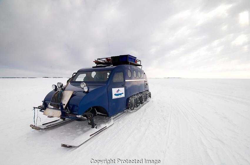 Bombardier (bug) on Great Slave Lake near Yellowknife