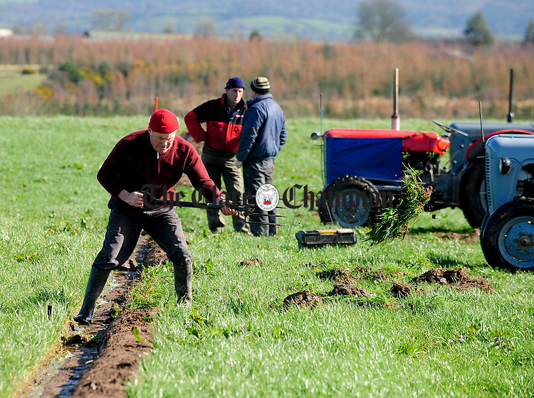 Johnnie White,Meelick, preparing the scribe mark during the ploughing match at O'Callaghans Mills.pic Arthur Ellis.