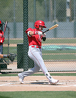 Livan Soto - Los Angeles Angels 2019 extended spring training (Bill Mitchell)
