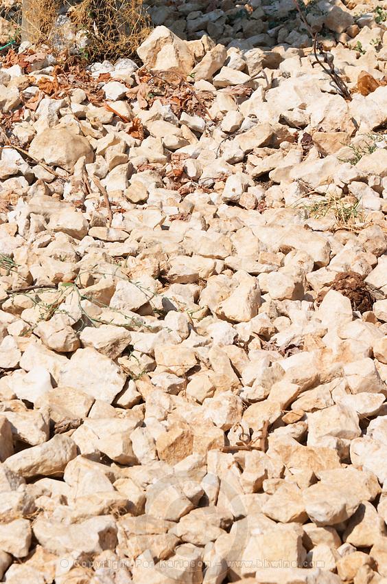 Lime stone limestone based very white soil, very much stones pebbles rocks. One of their best vineyards with very poor soil on a hilltop mountain near Citluk and Zitomislic. Vinarija Citluk winery in Citluk near Mostar, part of Hercegovina Vino, Mostar. Federation Bosne i Hercegovine. Bosnia Herzegovina, Europe.