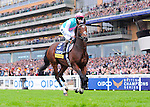 Frankel (no. 3), ridden by Thomas Queally and trained by Sir Henry Cecil, wins the group 1 Champion Stakes for three year olds and upward on October 20, 2012 at Ascot Racecourse in Ascot, Berkshire, United Kingdom.  (Bob Mayberger/Eclipse Sportswire)
