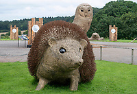 BNPS.co.uk (01202 558833)<br /> Pic: ZacharyCulpin/BNPS<br /> <br /> exStrawdinary Sculptures....<br /> <br /> Pictured: A spiky straw hedgehog sculpture<br /> <br /> Artists have created a series of giant animal sculptures made from hay and straw for a new outdoor art exhibition.<br /> <br /> Mike De Butts, Harriet Lumby and Alex Rinsler designed the collection of eight sculptures representing the UK's most iconic nocturnal native wildlife specifically for a new exhibition at Longleat House and Safari Park in Wiltshire.<br /> <br /> The art project, called 'Under the Moon', celebrates the mysterious world of animals after dark.<br /> <br /> The sculptures, which are up to three-metres tall include figures of an owl, fox, mole, badger<br /> and hedgehog alongside a toad, snail and a spider.