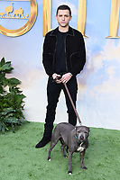 "Tom Holland<br /> arriving for the ""Dolittle"" premiere at the Empire Leicester Square, London.<br /> <br /> ©Ash Knotek  D3549 25/01/2020"