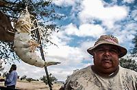 Camaron  del llamado azul  y de  muy buen tamaño.<br /> Luis Enrique Abril en calle pueblo nuevo y Solidaridad pescado por los pangueros del puerto de Guaymas.