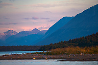 Coastal landscape along Naknek lake, Katmai National Park, Alaska