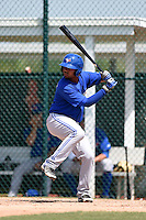 Toronto Blue Jays Andy Fermin (5) during a minor league spring training game against the Pittsburgh Pirates on March 21, 2015 at Pirate City in Bradenton, Florida.  (Mike Janes/Four Seam Images)