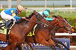 HALLANDALE BEACH, FL - MARCH 04: #4 Wake Forrest with jockey Javier Castellano on board, wins the Mac Diarmida (Grade II) Stakes at Gulfstream Park on March 04, 2017 in Hallandale Beach, Florida. (Photo by Liz Lamont/Eclipse Sportswire/Getty Images)