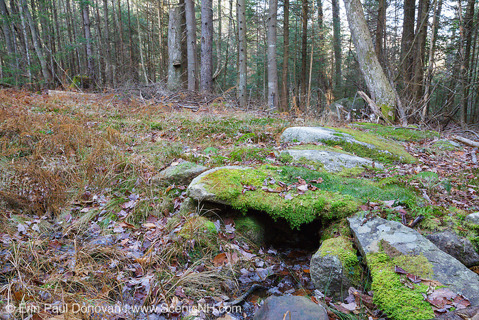 Remnants of an old stone culvert along the village road in the abandoned Peeling settlement (Mt. Cilley Settlement) in Woodstock, New Hampshire. Peeling was the original settlement of Woodstock, and this village was abandoned by the 1860s. This stone culvert could have possibly been built during the Peeling era. But It could have also been built sometime in the 1900s when the area was logged.