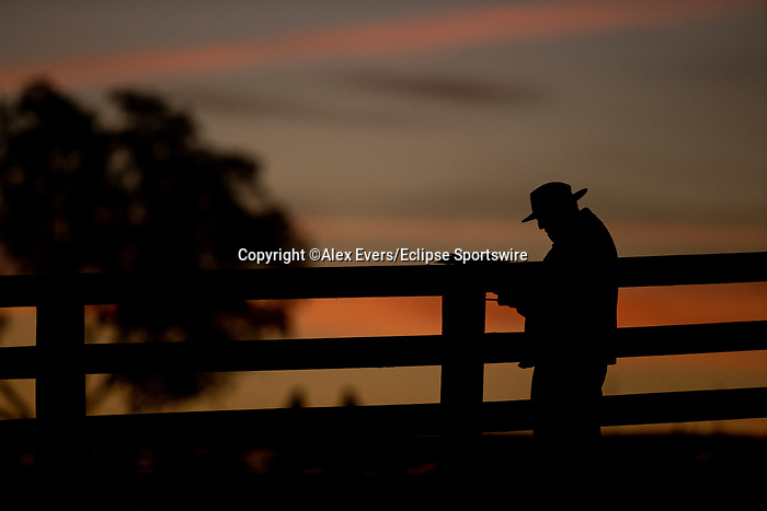 November 5, 2020: Scenes from morning workouts at Keeneland Racetrack in Lexington, Kentucky on November 5, 2020. Alex Evers/Eclipse Sportswire/Breeders Cup