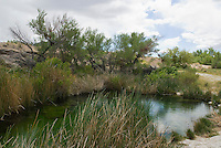 Point of Rocks Spring, Ash Meadows National Wildlife Refuge, Nevada