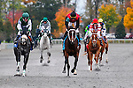 31 October 2009: Horses pull up in front of the grandstands at Keeneland after the first race. Keeneland's fall festival came to an undramatic end with overcast skies and low crowd numbers.