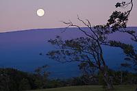 Moon setting over Mauna Loa