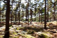 Colin Adams. Trailbuilder. Riding an On One Fatbike.  Swinley forest . Bracknell, Berks. August 2016.