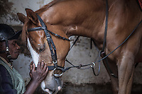 Work rider John Kuria shared a quiet moment with Nutcracker before morning exercises ayt Ngong Racecourse in Nairobi, Kenya. March 13, 2013. Photo: Brendan Bannon