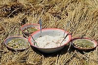 MADAGASCAR Morarano , lunch of farmers during rice harvest, rice and beans / MADAGASKAR Morarano , Mittagessen der Bauern bei der Reisernte, Reis und Bohnen