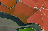 aerial map of salt ponds in Newark, Alameda County, California