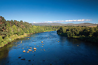The River Spey near Grantown-on-Spey, Cairngorm National Park, Highland