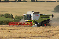 22.7.2020 Harvesting Winter Barley in Rutland  ©Tim Scrivener Photographer 07850 303986<br />      ....Covering Agriculture In The UK.
