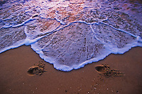 Wave washes away footprints at the beach