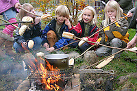 Kinder einer Grundschulklasse, Schulklasse sitzen am Lagerfeuer und röstet Brötchen an Stöckern und kochen Wasser für einen Tee, Feuer, Outdoor, camp-fire