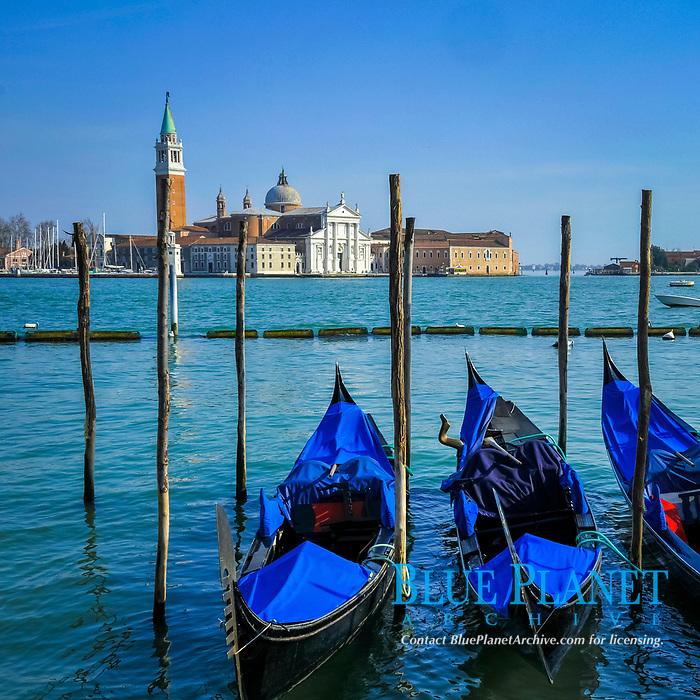 Four gondolas parked in Venetian lagoon, with San Giorgio Maggiore Island in the background, Venice, Veneto,  Italy