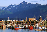 FISHING BOATS and YACHTS at anchor in the HARBOR below the PIER - HOMER, ALASKA
