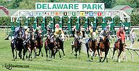 Upper Afleet winning at Delaware Park on 6/5/13