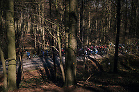 peloton racing through La Houppe forest<br /> <br /> 70th Kuurne-Brussel-Kuurne 2018<br /> Kuurne › Kuurne: 200km (BELGIUM)
