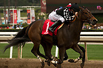 ARCADIA, CA  APRIL 7:  #1 Spiced Perfection, ridden by Joseph Talamo, battles #8 Show It N Moe It, ridden by Mike Smith to win the Evening Jewel Stakes on April 7, 2018 at Santa Anita Park Arcadia, CA.  (Photo by Casey Phillips/ Eclipse Sportswire/ Getty Images)