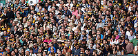 Photo: Richard Lane/Richard Lane Photography. London Wasps Harlequins. London Double Header. Aviva Premiership. 07/09/2013. Wasps supporters.