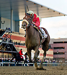 April 5, 2014: Wicked Strong, ridden by jockey Rajiv Maragh, wins the Wood Memorial Stakes on Wood Memorial Day at Aqueduct Race Track in Ozone Park, NY. Eric Kalet/ESW/CSM
