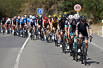 The peloton led by DSM Team and Team BikeExchange during Stage 19 of La Vuelta d'Espana 2021, running 191.2km from Tapia de Casariego to Monforte de Lemos, Spain. 3rd September 2021.    <br /> Picture: Luis Angel Gomez/Photogomezsport   Cyclefile<br /> <br /> All photos usage must carry mandatory copyright credit (© Cyclefile   Luis Angel Gomez/Photogomezsport)