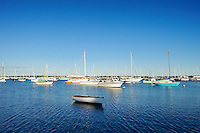 Boats in harbor, Vineyard Haven, Martha's Vineyard, Massachusetts, USA