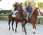 """Point of Entry (#2) with John Velazquez win the 30th running of the Kitten's Joy Gulfstream Turf Handicap (Grade 1) for 4-year olds & up, going 1 1/8 mile on the turf, at Gulfstream Park.  Trainer Claude """"Shug"""" McGaughey III.  Owner Phipps Stable"""