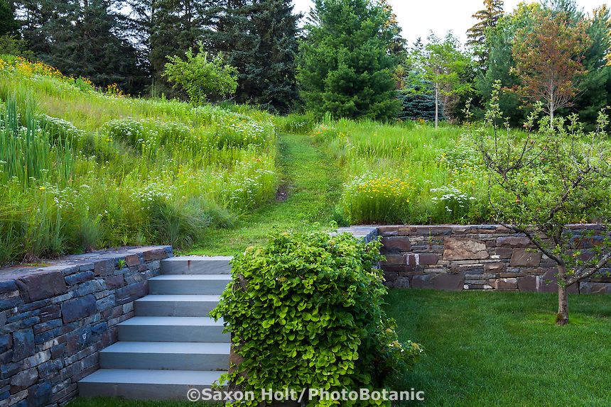 Stone steps leading to grass path through Connecticut meadow garden <br />