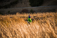 A young woman in traditional Indian dress dances surrounded by the autumn-dry wetland grasses at Coyote Hills Regional Park, Fremont, California