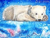 Sinead, CHRISTMAS ANIMALS, WEIHNACHTEN TIERE, NAVIDAD ANIMALES, paintings+++++,LLSJ2153A,#xa# ,icebear,icebears ,polarbear
