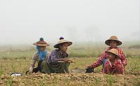 Farmer in Hpa An, Myanmar