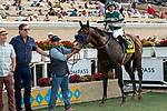 """DEL MAR, CA  AUGUST 17:  #6 Higher Power, ridden by Flavien Prat, in the winners circle after winning the TVG Pacific Classic (Grade 1) """"Win and You're In Breeders' Cup Classic Division"""" on August 17, 2019 at Del Mar Thoroughbred Club in Del Mar, CA. (Photo by Casey Phillips/Eclipse Sportswire/CSM)"""