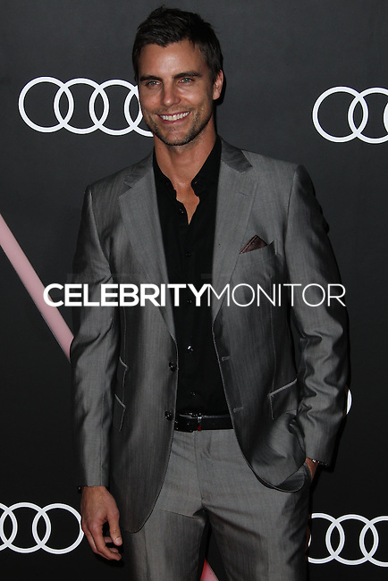 LOS ANGELES, CA - JANUARY 09: Colin Egglesfield at the Audi Golden Globe Awards 2014 Cocktail Party held at Cecconi's Restaurant on January 9, 2014 in Los Angeles, California. (Photo by Xavier Collin/Celebrity Monitor)